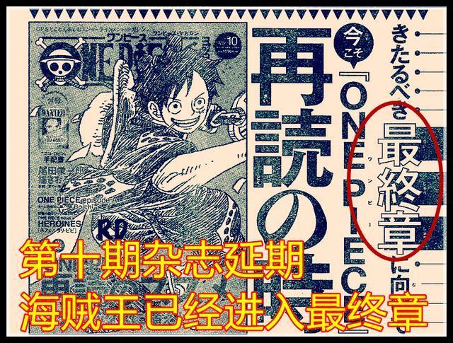 海贼王988话情报:漫画合刊看不到,另外SBS和原画集全部延期