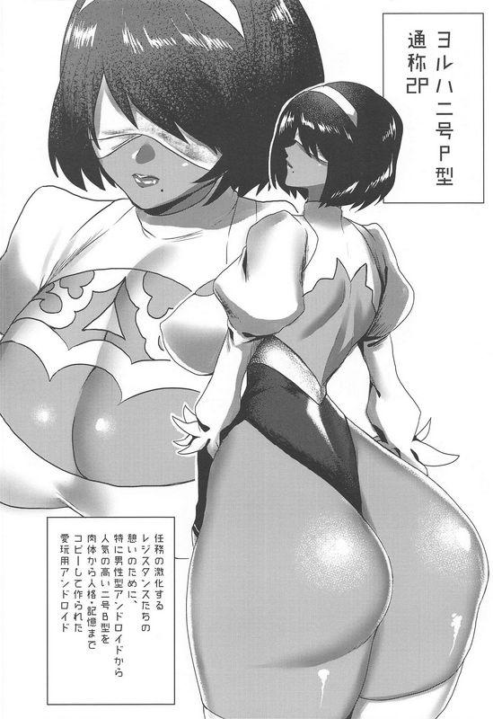 斉木ヨルハ二号Pet型尼尔自动人形